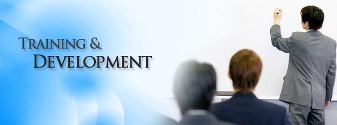 training and devlopment Executive summary overall, a wide range of skills are important for a successful career in the oil and gas industry therefore employees place great.